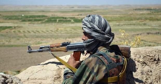 Афганистан вновь оказался под властью талибов