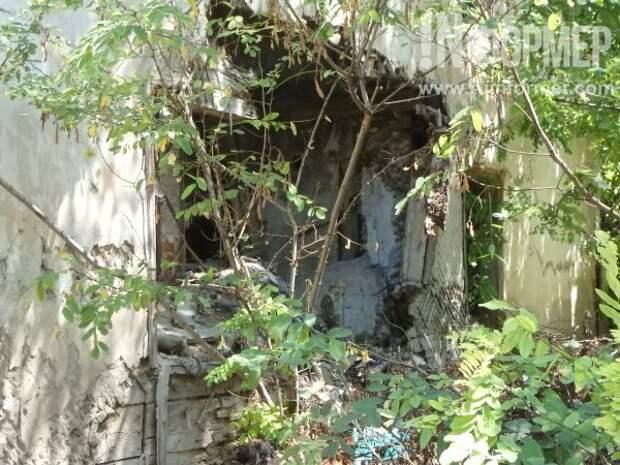 Кошмары на Херсонской: заброшенные ночлежки Щербаковой?