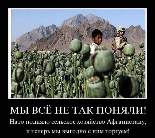 В Астане прошел саммит пяти стран центральной Азии, Владимира Путина не пригласили