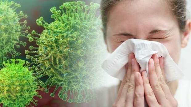 Коронавирус: что нужно знать о загадочном заболевании и безопасны ли посылки из Китая