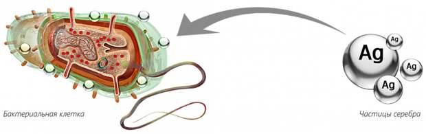 Серебряная пуля в арсенале агропрома