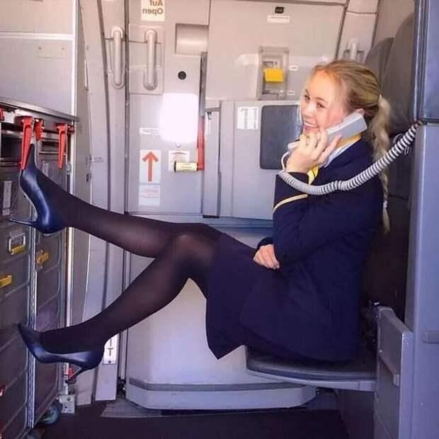 Ножки стюардесс. Подборка chert-poberi-styuardessy-chert-poberi-styuardessy-33360108022021-14 картинка chert-poberi-styuardessy-33360108022021-14