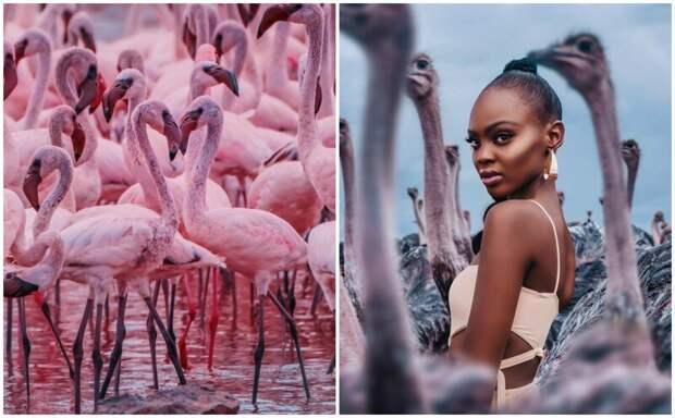 Восхитительная Кения в фотографиях москвички Кристины Макеевой (35 фото)