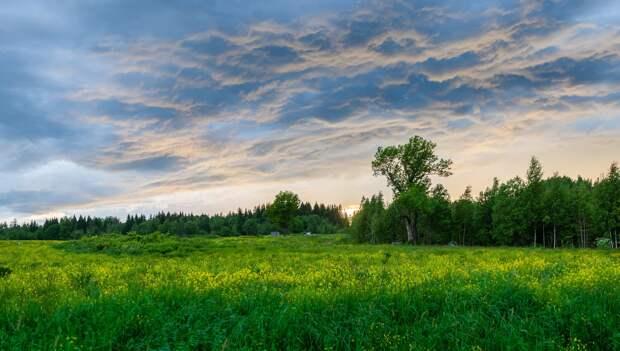 Где отдохнуть в России летом 2021 года: на море, на озере, в горах