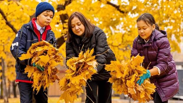 Ветки и листья украсят террариумы