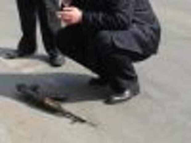 Турецкий марш бандитского Петербурга