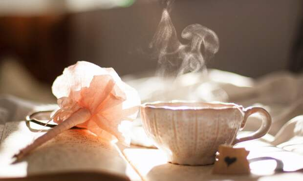 Фестиваль чая планируют провести в Евпатории