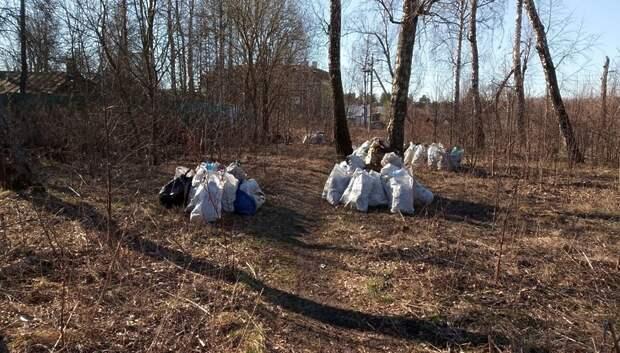 Более 20 кубометров мусора собрали в поселке Поливаново Подольска