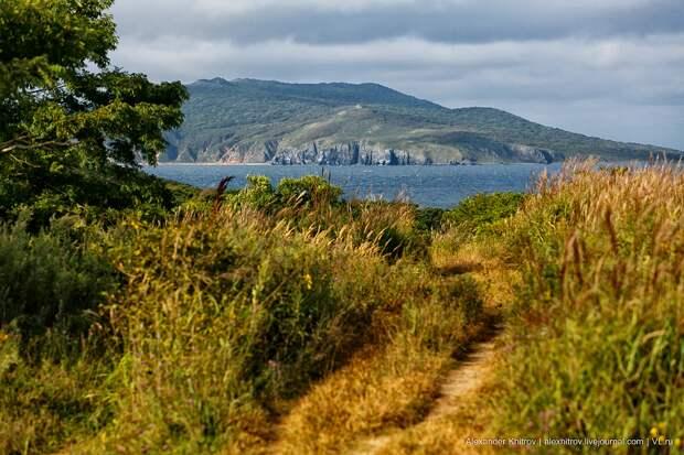 Остров Рейнеке в наши дни. Фото: Александр Хитров