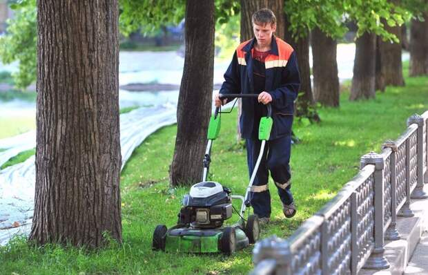 Почему в саду Колесникова косят траву? Фото с сайта mos.ru