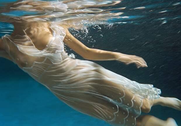 Глубокий смысл: удивительные подводные фотографии Барбары Коул
