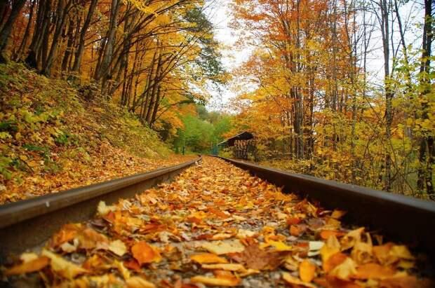 Будет холоднее, чем ноябрь и декабрь: погода на октябрь 2021 не порадует теплом