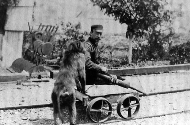 Джэймс Эдвин Уайд со своим павианом Джеком. 1879 год / Источник: wikipedia.org