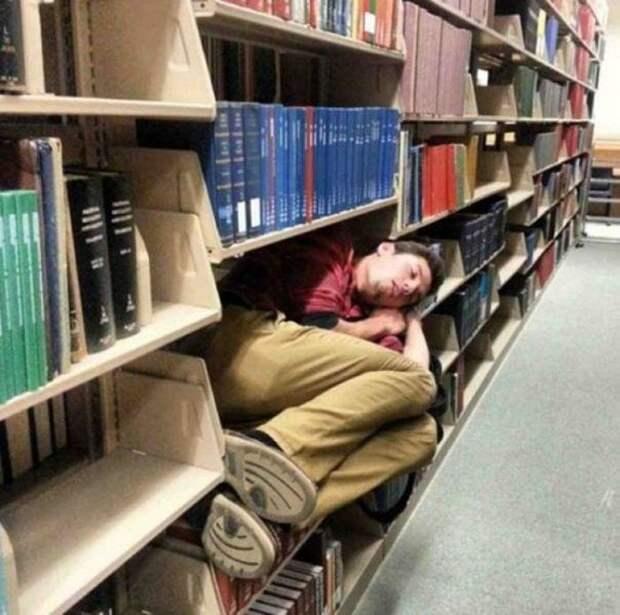20 доказательств того, что если очень хочется спать, то для этого подойдёт любое место