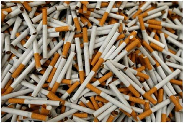 Крупнейшая табачная компания выступила за запрет сигарет