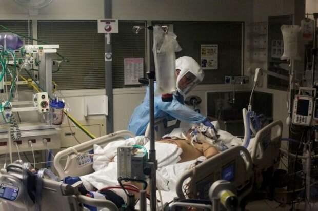 В США растет суточная смертность от COVID-19