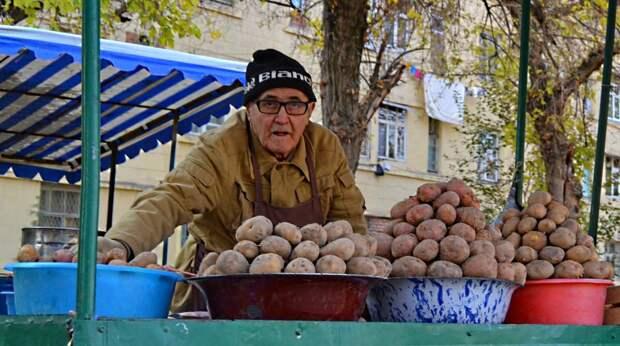 Штраф за продажу картошки , выращенную не из тех семян . Скоро всё будем покупать  только в сетевых магазинах