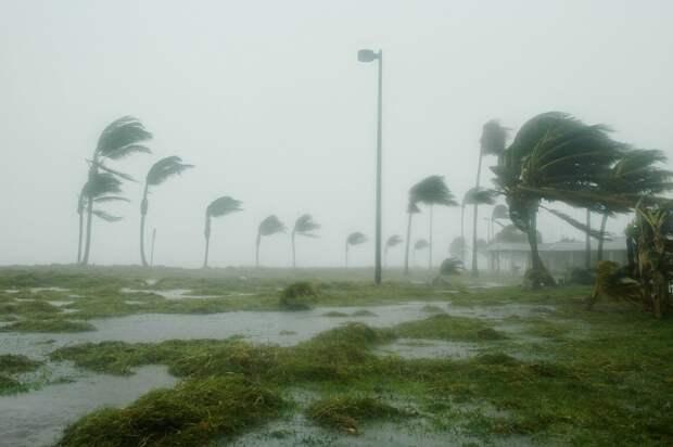 Ураган вКитае унес жизни 11 человек ираскрутил стоящий наВПП самолет