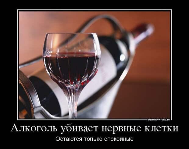 Веселые демотиваторы для хорошего настроения (12 фото)