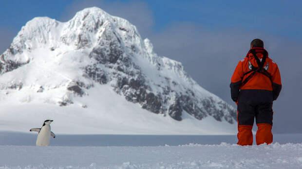 Битва за Антарктиду. Россия не готова?