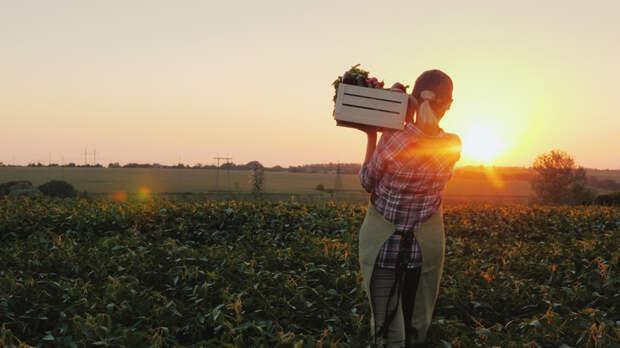 """«Идея """"натуральной"""" еды — одна из самых вредных ошибок»"""