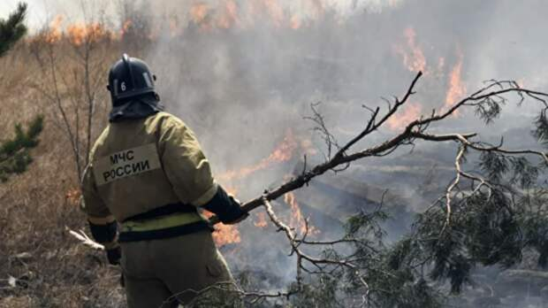 В Тюменской области рассказали о работе спасателей по тушению пожаров