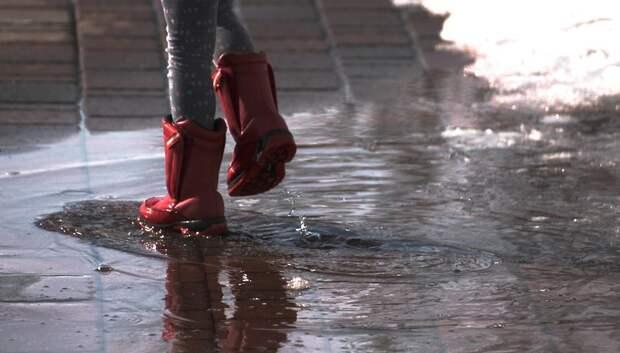 Теплая и дождливая погода ожидает жителей Подольска в четверг
