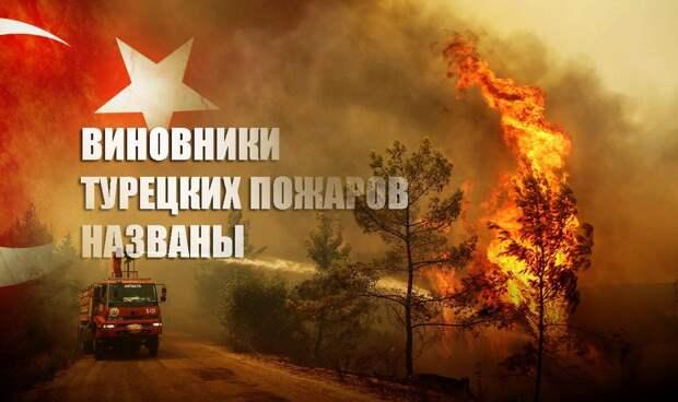 «Дети огня»: В Турции назвали неожиданных ответственных за поджоги лесов