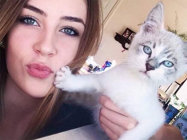 Прикрыл бы я к чертям твой Инстаграм! 15 котов которые терпеть не могут целоваться обниматься, без кота и жизнь не та, коты и кошки, приколы, приколы с котами, смешные коты и кошки, юмор