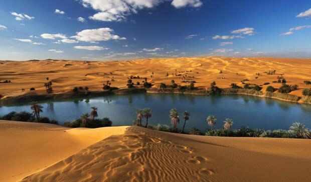 Зеленый мир под слоем песка: как выглядела Сахара 5000 лет назад