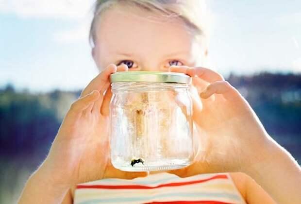 Симптомы и лечение аллергии на укусы насекомых у детей...