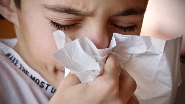 Иммунолог Болибок перечислил методы лечения аллергии