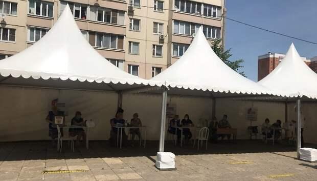 Шатры для голосования установили в шести дворах микрорайона Кузнечики