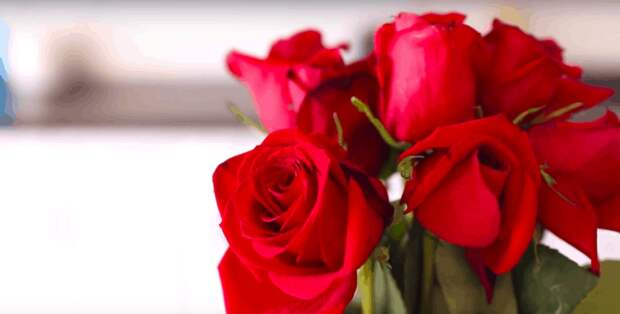 Не спешите выбрасывать завядшие розы, ведь из них можно сделать прекрасное средство