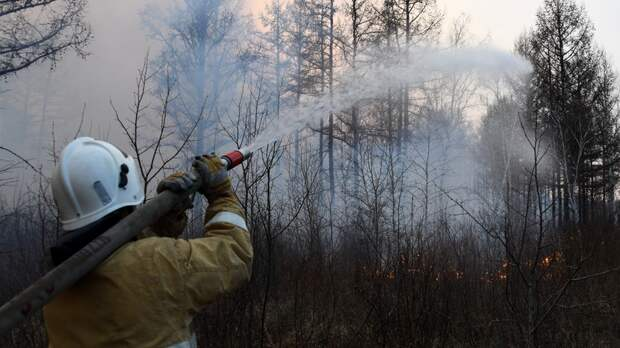 В России за сутки ликвидировали 56 природных пожаров