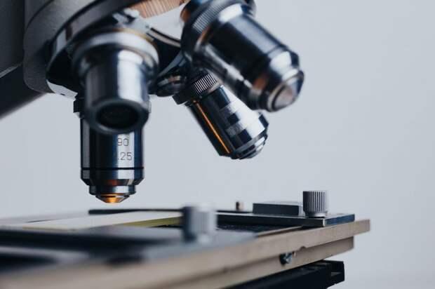 Набор будущих ученых стартовал в «Перспективе»
