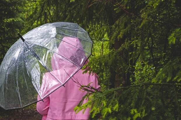 ВМоскве иобласти объявлен желтый уровень погодной опасности на2−4мая