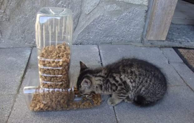 Лишние пластиковые бутылки можно использовать и на благо домашних питомцев. /Фото: daddy-cool.gr