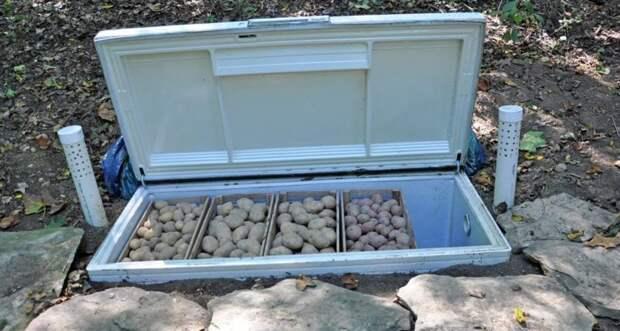 2. Дачники, например, будут в восторге от большого количества способов хранения овощей. Если нет гаража или погреба, куда можно укладывать честно выращенное, то старый холодильник точно придется по вкусу Фабрика идей, дизайн, интересно, места для хранения, полезно, фото