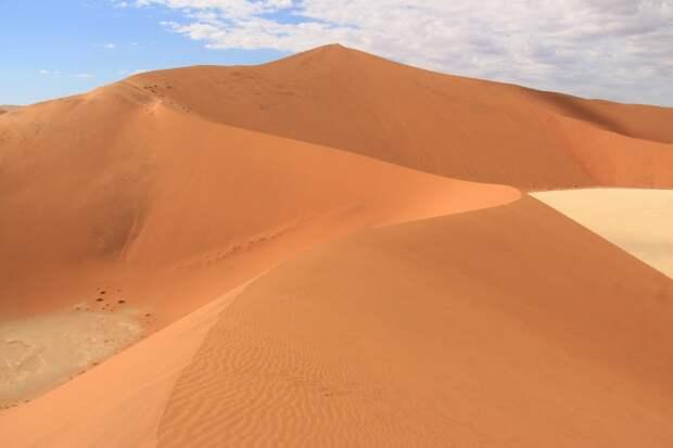 Самые высокие дюны в мире и сафари в Намибии в чисто женской компании
