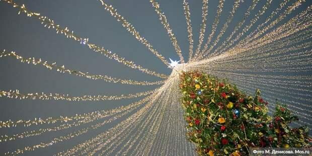 Собянин рассказал о праздничных световых конструкциях на улицах Москвы. Фото: М. Денисов mos.ru