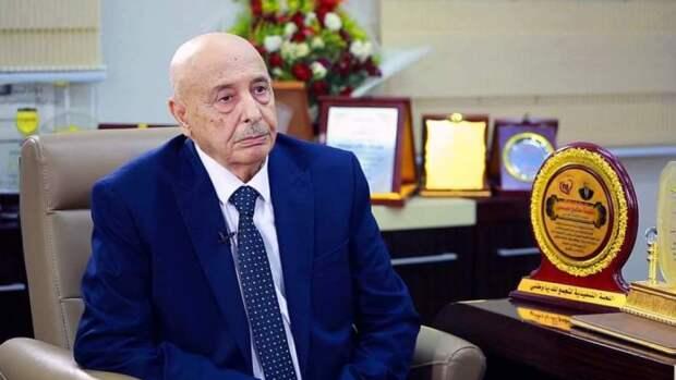 Востоковед Долгов подтвердил вероятность нового раскола в Ливии при срыве выборов
