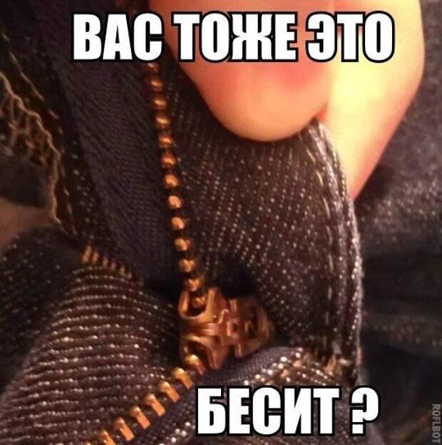 BOVBogr2-Kg