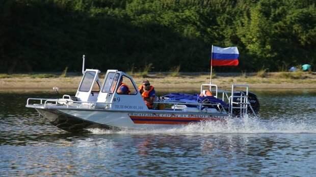 Спасатели помогли мужчине в Борисовском пруду на юге Москвы