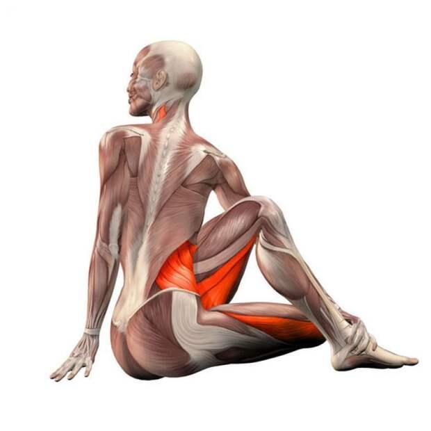 Скручивание позвоночника: Самое полезное упражнение для всего организма