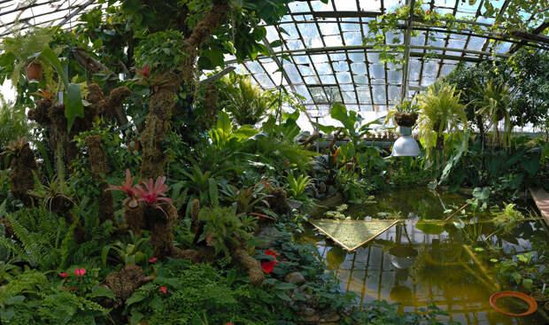 Все в ботанический сад