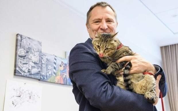 Депутат пришел на заседание Заксобрания с котом заксобрание, котики, онихэктомия, свердловская область, удаление когтей