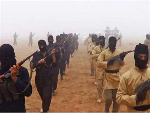 ИГИЛ сделало заявление о бойне в Вене