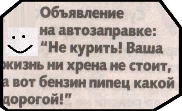 ВИннЕГРЕТ С ПЕРЦЕМ 42