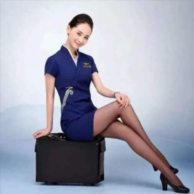 Ножки стюардесс. Подборка chert-poberi-styuardessy-chert-poberi-styuardessy-15320614122020-3 картинка chert-poberi-styuardessy-15320614122020-3